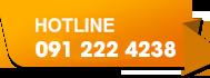 Hotline:091.222.4238
